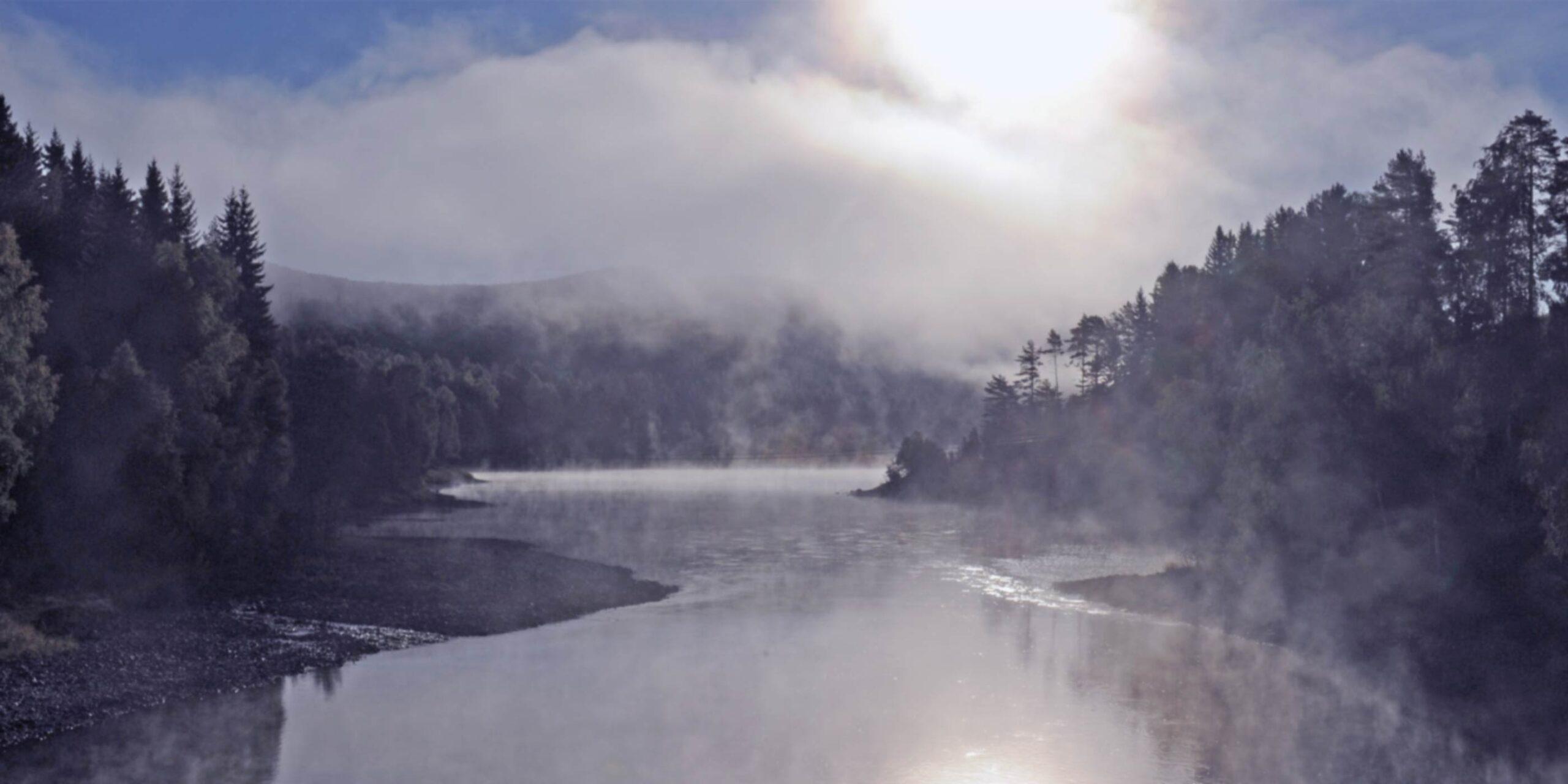 Welkom - Banner Natuur