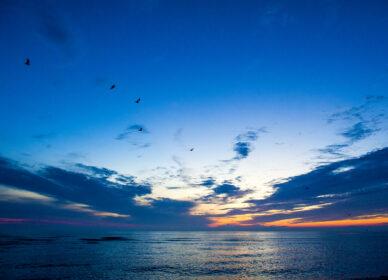 zeelandschap